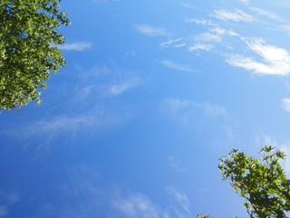 夏空.jpg